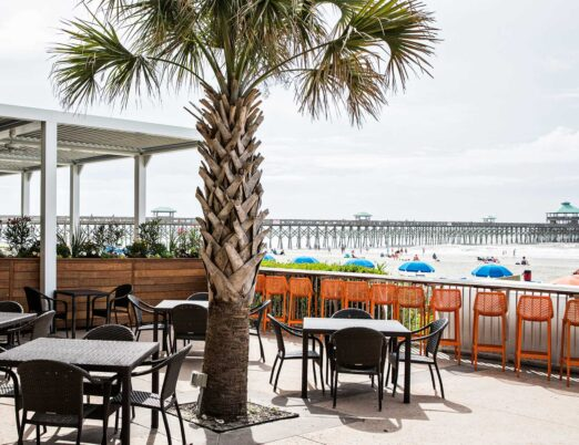 Beach front restaurant seating under large palm tree